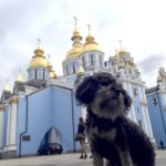 Taking your dog to Ukraine